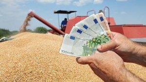 Preț grâu 2020 - finalul campaniei de recoltare