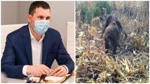Ministrul Mediului, Tánczos Barna: Vom plăti toate pagubele făcute de animalele sălbatice!