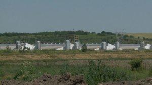 O primărie cere Gărzii de Mediu să intervină în cazul unei ferme care emană mirosuri neplăcute!