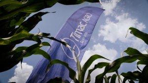 ADN, noul concept de fertilizare lansat de Timac Agro România cu biostimulatori revoluționari!
